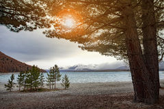 Beautiful scenic of lake tekapo south island new zealand Royalty Free Stock Images