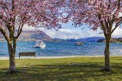 Beautiful scenic of lake wanaka new zealand Royalty Free Stock Photo