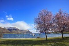 Beautiful scenic of lake wanaka southland new zealand stock photo