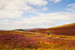 Beautiful scenic mountain landscape.  Wicklow Mountains National Park, County Wicklow, Ireland Stock Image