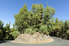 Picturesque hairpin bend on Tenerife stock images