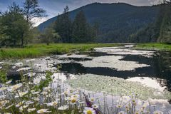 The beautiful scenic scapes of Vancouver and the Fraser Valley royalty free stock photography
