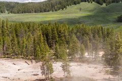 Beautiful scenic view at Hayden valley in Yellowstone National Park stock photography