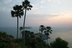 Beautiful scenic view of palm trees and cloudy sky during sunrise. In phuket Royalty Free Stock Photography