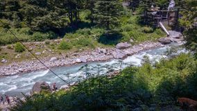 Beautiful scenic view of river and forest royalty free stock photography