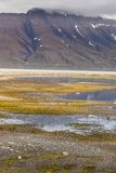 Beautiful scenic view of Spitsbergen (Svalbard island), Norway Stock Photography