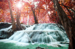 Beautiful scenic of waterfall with autumn forest. Stock Photo