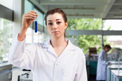 Beautiful scientist holding a test tube Stock Images