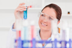 Beautiful scientist lookin at a tube test Stock Image