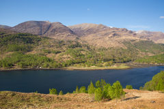 Beautiful Scottish Loch and mountains Scotland uk in summer Royalty Free Stock Image
