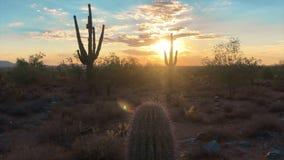 Scottsdale Arizona desert sunset. Beautiful Scottsdale Arizona desert sunset video footage stock video footage