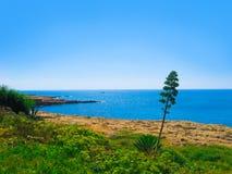 Beautiful sea coast Royalty Free Stock Image
