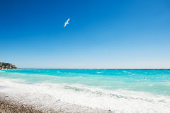 Beautiful sea coast in Nice, France. Royalty Free Stock Images