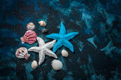Beautiful sea composition. Seashells, starfish, copy space on a dark blue background. Stock Photos