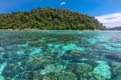 Beautiful sea and coral at tropical island, Koh Lipe, Andaman Se Royalty Free Stock Photos