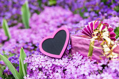 Beautiful sea of flowers with a pink heart and a gift Stock Photo