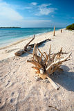 Beautiful sea at Gili Meno, Indonesia. Royalty Free Stock Images