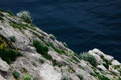 Beautiful sea harbor surrounded by cliffs overgrown with plants. Clear seawater and visible seabed. Crimea, Simeiz. Beautiful sea harbor surrounded by cliffs royalty free stock photos
