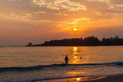Beautiful sea landscape nature detail royalty free stock image