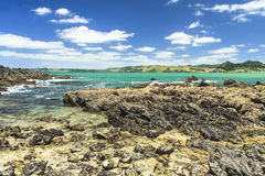 Beautiful sea landscape in New Zealand Royalty Free Stock Photography