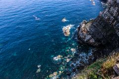 Beautiful sea landscape of a rocky shore with blue and green water and foam in the rocks stock images