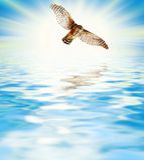 Beautiful sea scenic Stock Photo