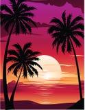 Beautiful Sea Sunrise. On a beach Royalty Free Stock Photos