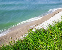 Beautiful sea ​​view from the cliff with green grass and flo Stock Images