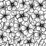 Beautiful seamless background in black-and-white s. Tyle. Blossoming branches of trees. Outline of flowers. Symbol of spring Stock Photography