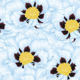 Beautiful seamless background with blue flowers. Hand-drawn with effect of drawing in watercolor Royalty Free Stock Photography