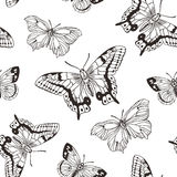 Beautiful seamless background of butterflies black and white colors.  Vector illustration. Royalty Free Stock Image