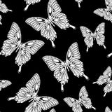 Beautiful seamless background with butterflies. Stock Images