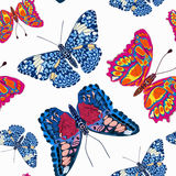 Beautiful seamless background of butterflies, vector illustratio Stock Image
