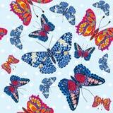 Beautiful seamless background of butterflies, vector illustratio Stock Photos