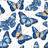 Beautiful seamless background of butterflies Stock Image