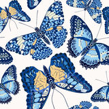 Beautiful seamless background of butterflies Stock Images