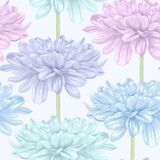 Beautiful seamless background with dahlia. Stock Images