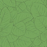 Beautiful seamless background with green leaves. Royalty Free Stock Image