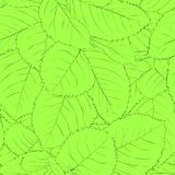 Beautiful seamless background with green leaves Royalty Free Stock Photo