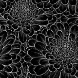Beautiful seamless background with monochrome black and white flowers chrysanthemum. Stock Photography