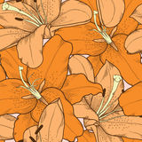 Beautiful seamless background with orange lilies. Hand-drawing. Many similarities to the author's profile stock illustration