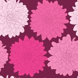 Beautiful seamless background with pink flowers. Stock Images