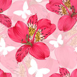 Beautiful seamless background with pink and red alstroemeria flower. Royalty Free Stock Photo