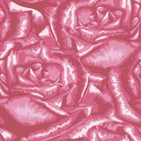 Beautiful seamless background with pink roses. Stock Photos