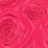 Beautiful seamless background with pink roses. Royalty Free Stock Photo