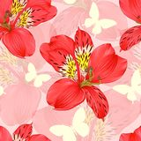 Beautiful seamless background with red alstroemeria flower, silhoette butterfly. design greeting card and invitation of the weddin Stock Photos