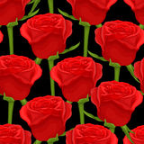 Beautiful seamless background with red roses on black Royalty Free Stock Photo