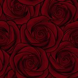 Beautiful seamless background with red roses. for greeting cards and invitations of the wedding, birthday, Valentine's Day, mother Royalty Free Stock Image