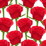 Beautiful seamless background with red roses on white. Stock Photography