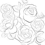 Beautiful seamless background with roses Royalty Free Stock Images